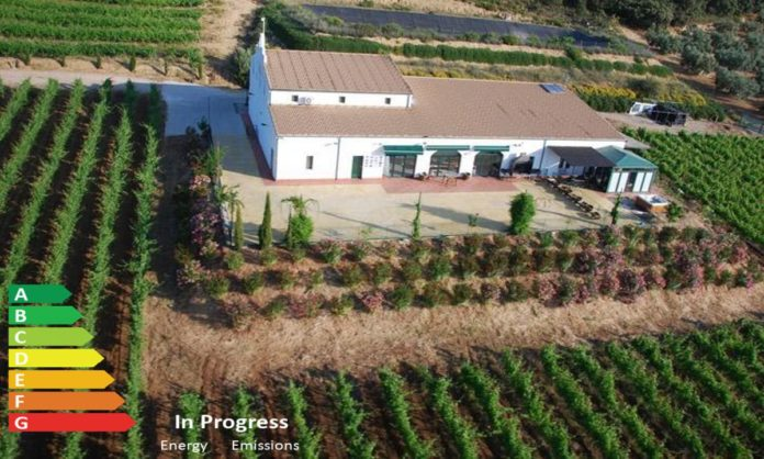 Realestateinvestor_Winery_investmentproposal